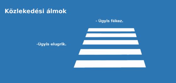 Zebra_almok_FHD_kesz